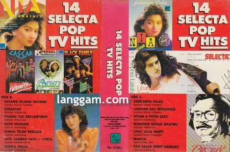 14 Selecta Pop TV Hits